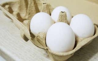 Свойства белка: как сделать домашний клей
